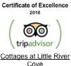 trip_advisor_logo_3