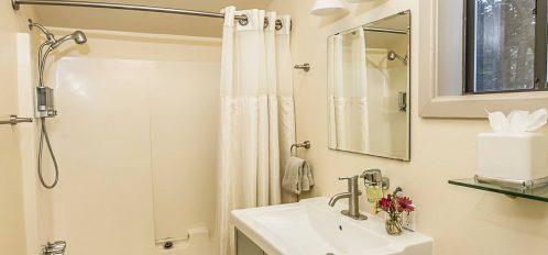 Albion room's bathroom