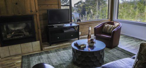 Elk Room's living room